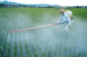 spraying.